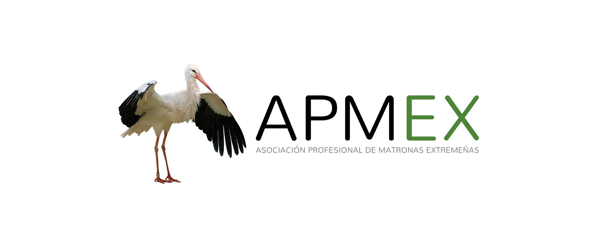 Apemex Logo Grande